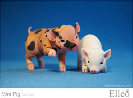 Mini Pig doll bjd 07 by leo3dmodels
