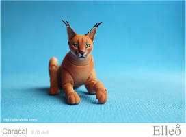 Caracal Bjd Doll 05 by leo3dmodels