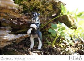 Zwergschnauzer 04 by leo3dmodels