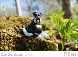 Zwergschnauzer 05 by leo3dmodels