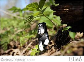 Zwergschnauzer 06 by leo3dmodels