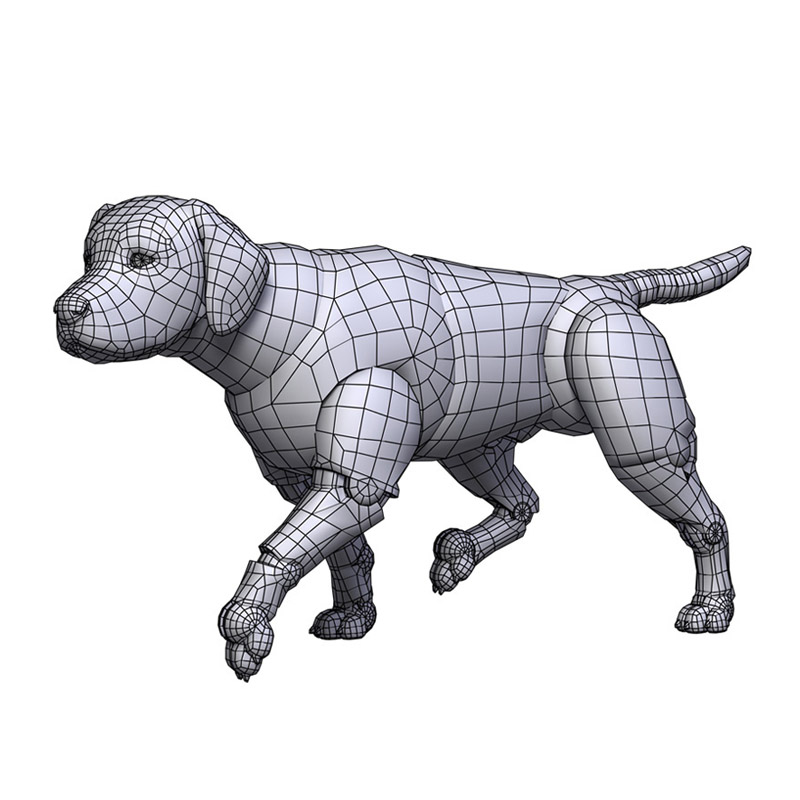 Labrador by leo3dmodels