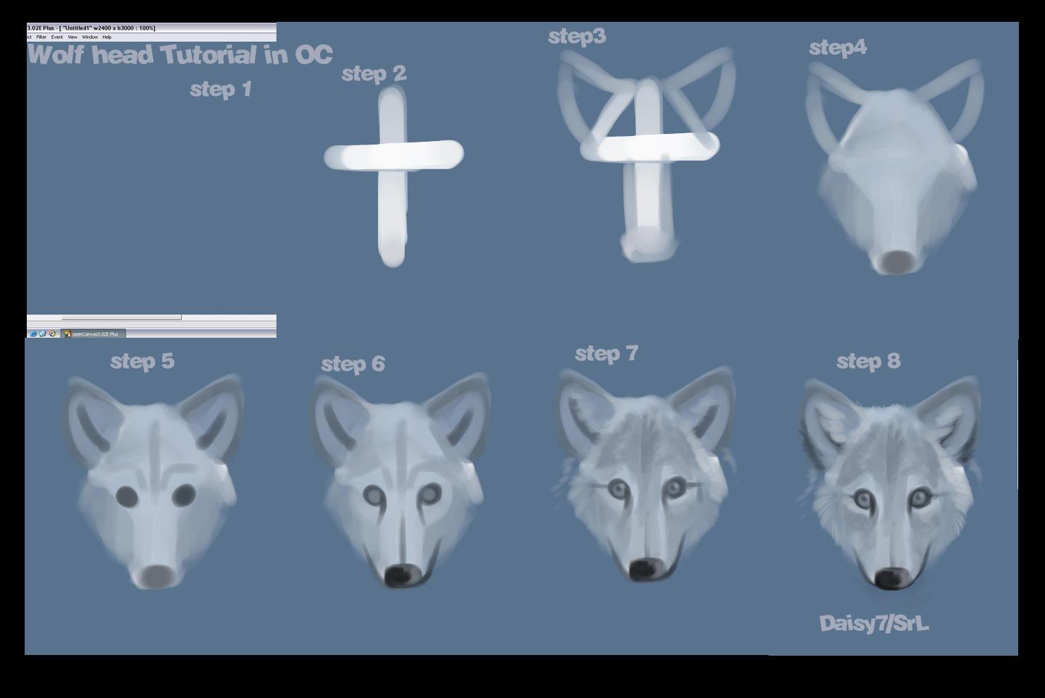 Wolf head tutorial by daisy7