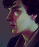 Sherlock by sarucatepes