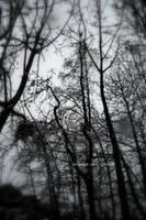 I Ran by Mitsinka