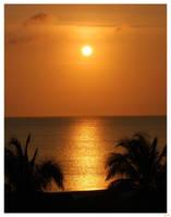 Golden Sunrise by lynsea