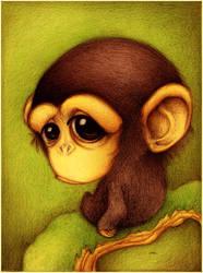 Chimpance. by faboarts