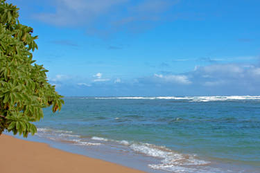 Kauai beach by JHealphoto