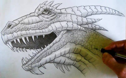 Mark Crilley Dragon Head Tutorial by MCorderroure