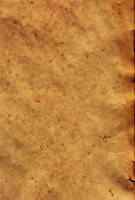 Parchment Paper 8 by Steamrider86