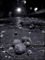 Sleeping Acorn by bdusen