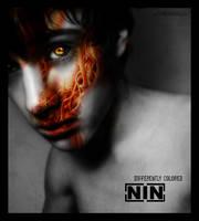 NIN by myndsnare
