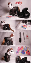 Dexter.....the pony by Woosie