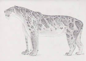 Smilodon fatalis by Smerjeevski