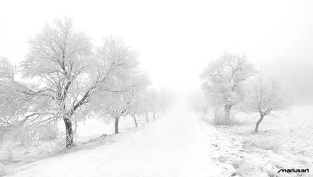 Winter I by Mariusart