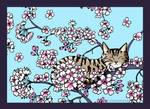 Cherry Blossom Slumber by Louloucatmom