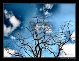 Blue Sky Day by Arsiema