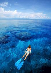 Diving in Indonesia by WonderfulIndonesia