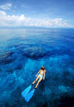 Diving in Indonesia by WonderfulIndonesia