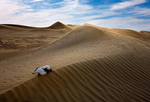 UAE 2 by lonelywolf2