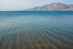 Dahab-Laguna-14 by Dashka-bird