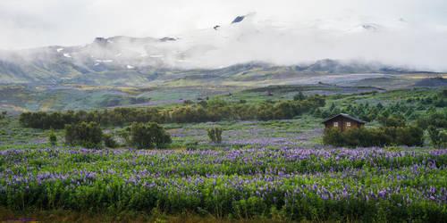 Iceland-Road-63 by Dashka-bird