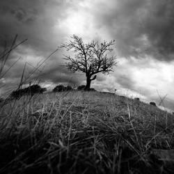 standing alone by taykut