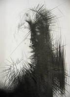 Bodkin Head 2010 by MarosBaran