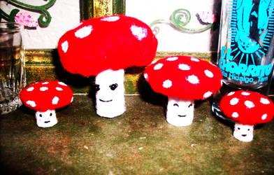 Mushrooms by kibishii-umi