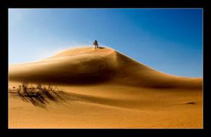 Desert trip I by h9351