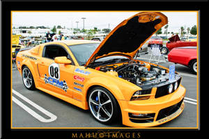 2007 Ford Mustang by mahu54