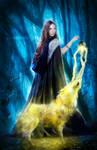 My light by DanielPriego