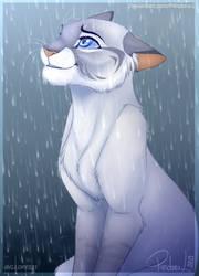 CM: Rain open my eyes... by P4ndora-L