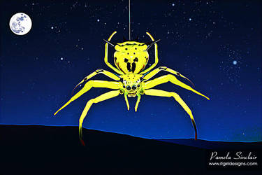 The Orion Spider by pams00