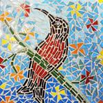 Scarlet-chested sun bird - table 6 by SamanthaJordaan