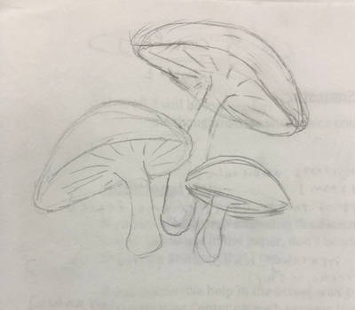 Mushy mushrooms by Briannux