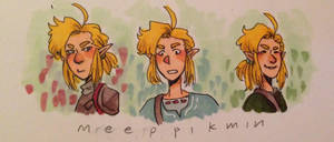 botw link again by meeppikmin