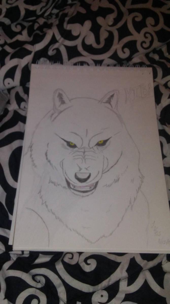 Kiba by Lonewolf425