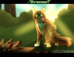 Shrewpaw? by LolliChaan