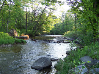 Coon Brook Up by Comtom1