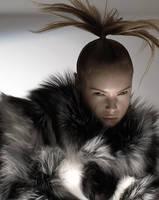 Fur 6 by Sodapop77