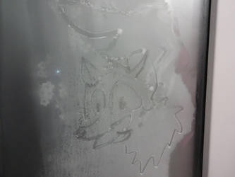 Toony fox's face at the frozen window 2/2 by san-evd