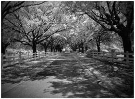 Etheral Corridor by SteelAtlas