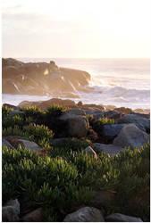 Shoreline by WinterSnowfall23