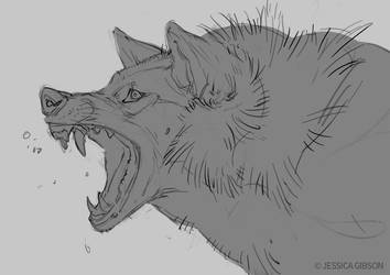 Angry Wolf Sketch by Servaline