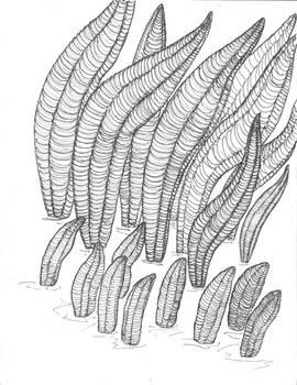 Pteridinium simplex BW by avancna