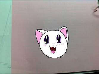 A kitty by Mareyethu