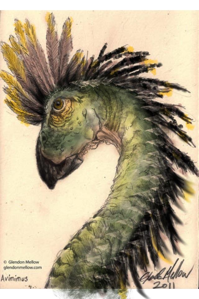 Avimimus - iPhone painting by GlendonMellow