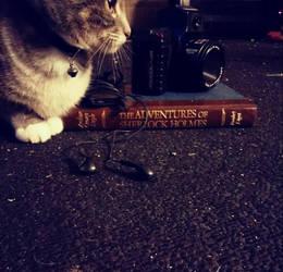 Artsy Fartsy Kitty Cat by ContagiousElf