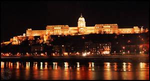 Royal Palace Budapest by karenbirch